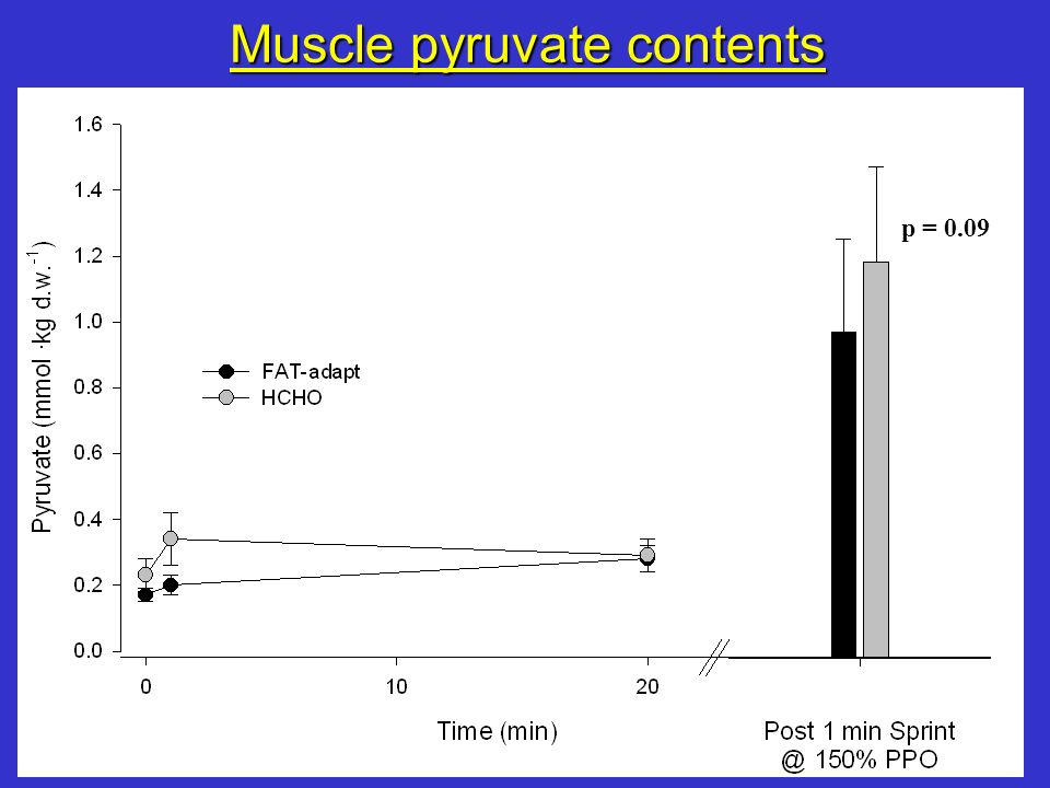 Muscle pyruvate contents