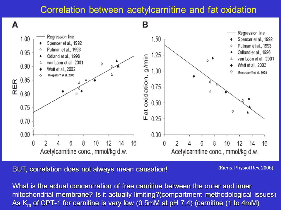 Correlation between acetylcarnitine and fat oxidation