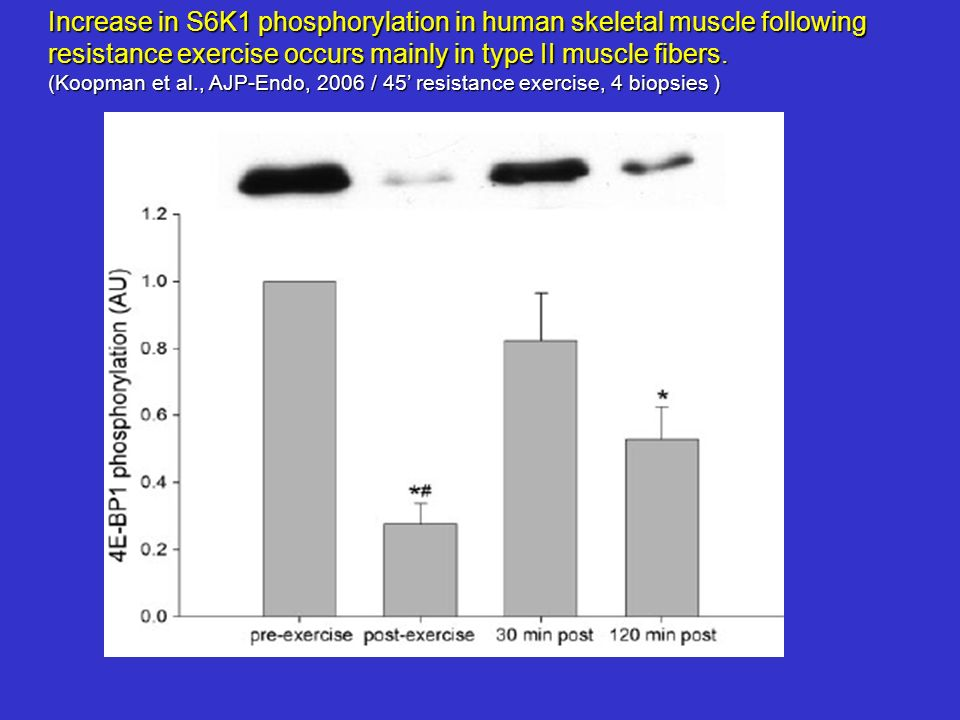 Increase in S6K1 phosphorylation in human skeletal muscle following