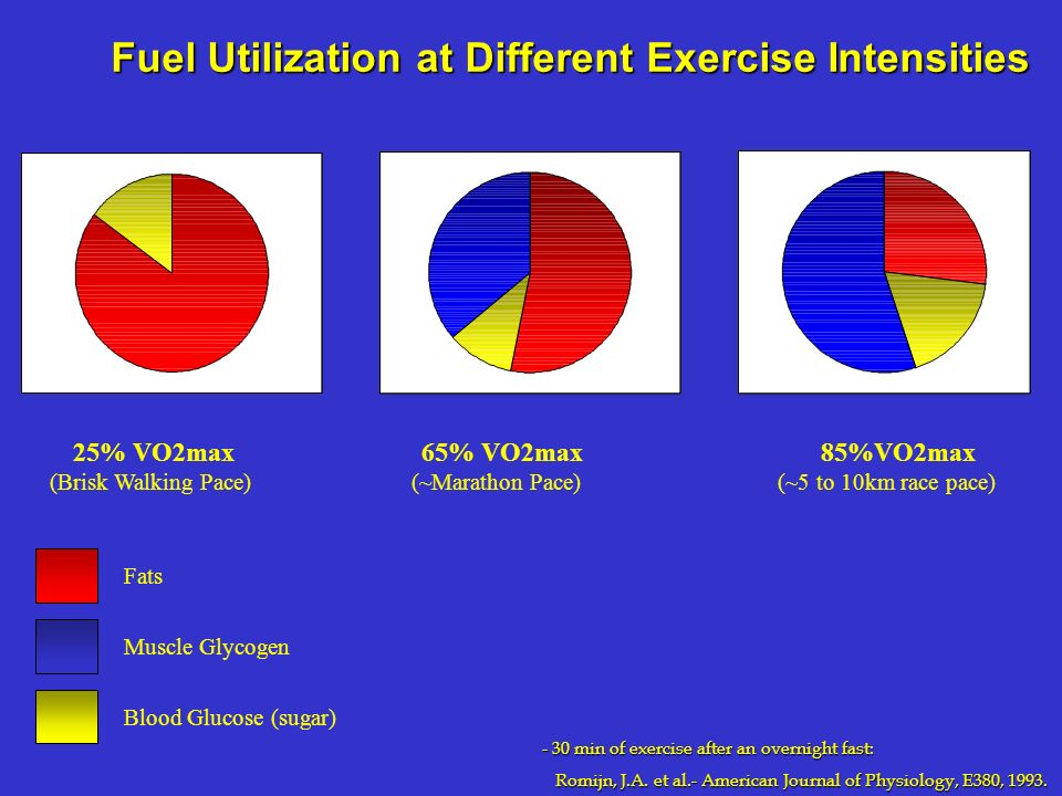 Fuel Utilization at Different Exercise Intensities