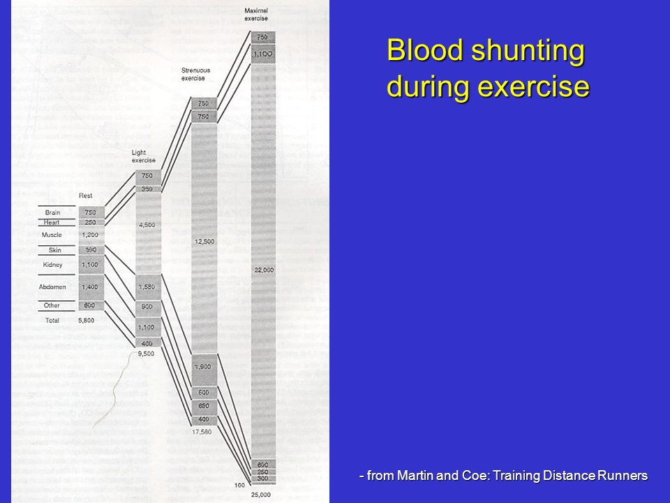 Blood shunting during exercise