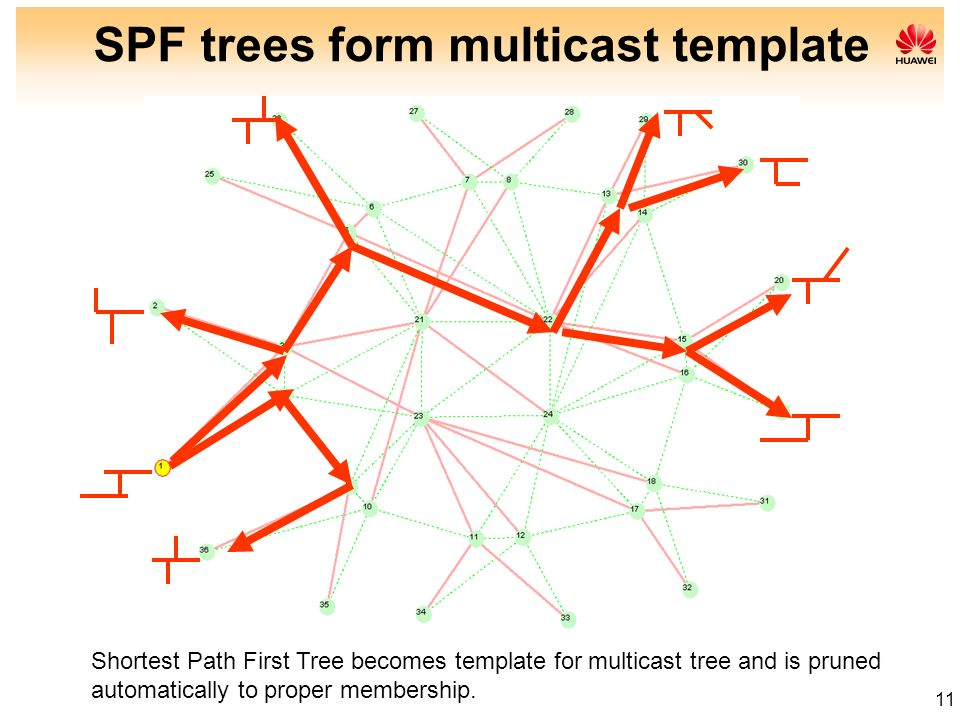 SPF trees form multicast template