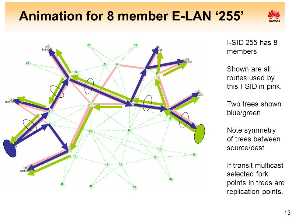 Animation for 8 member E-LAN '255'