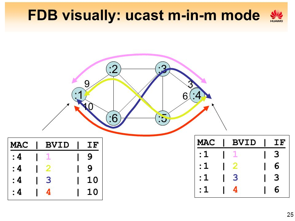 FDB visually: ucast m-in-m mode