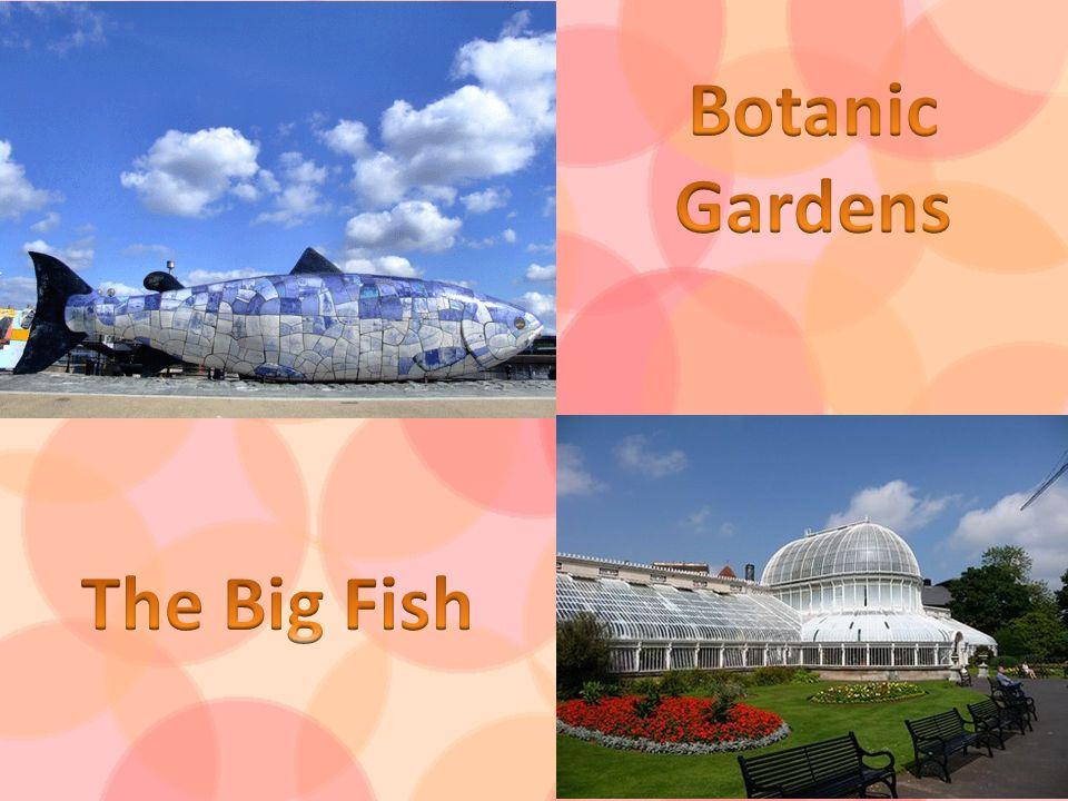 Botanic Gardens The Big Fish
