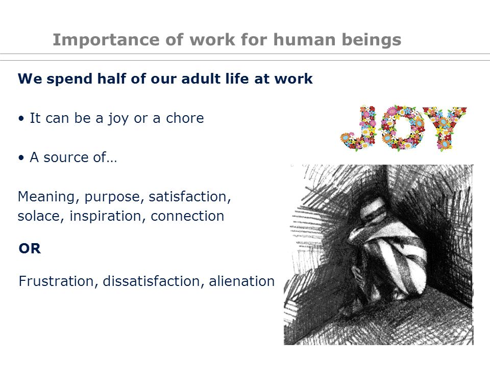 Importance of work for human beings