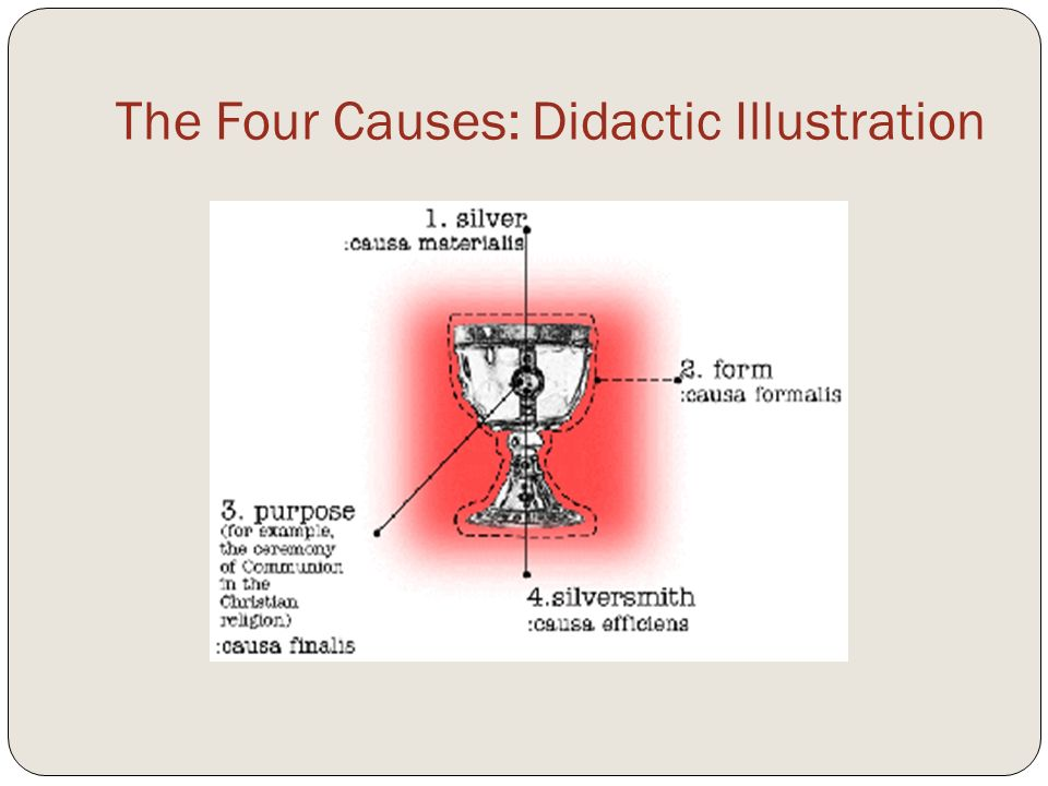 The Four Causes: Didactic Illustration