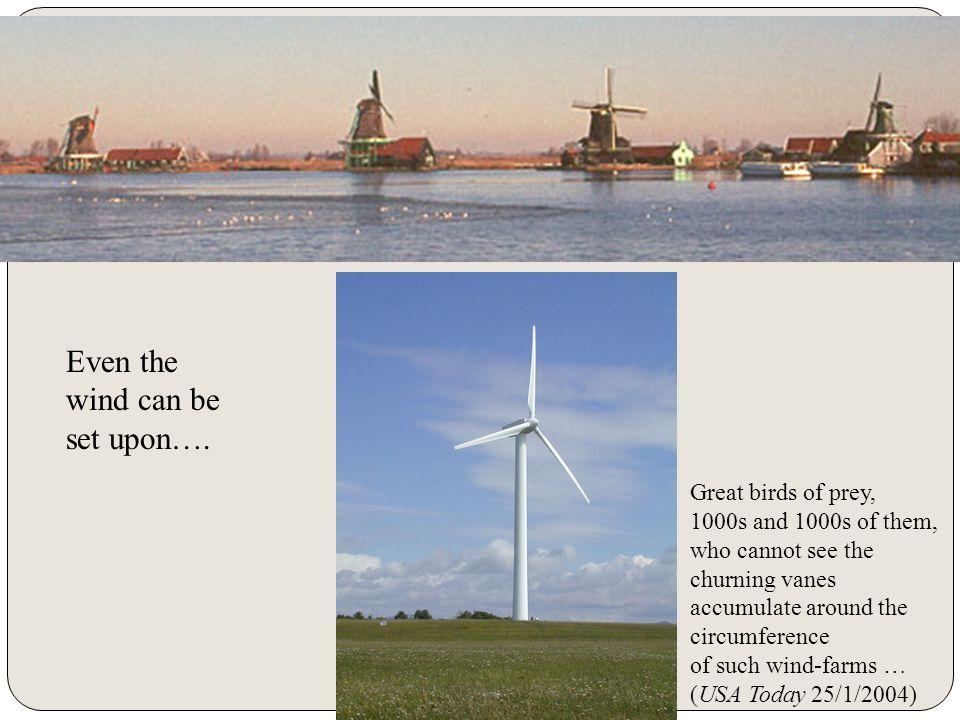Two windmill typs Even the wind can be set upon…. Great birds of prey,