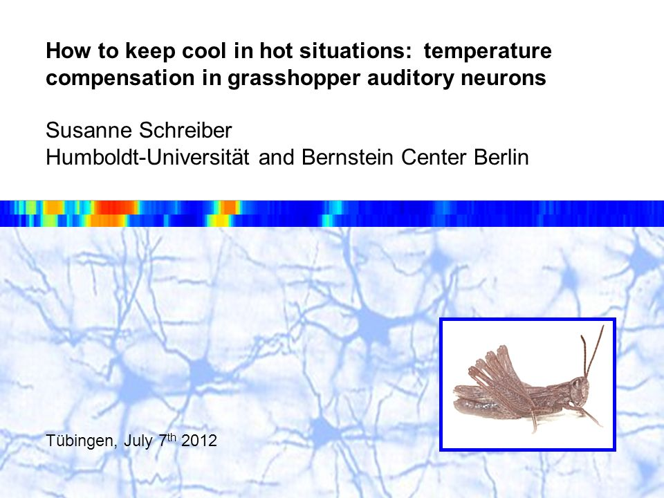 How to keep cool in hot situations: temperature