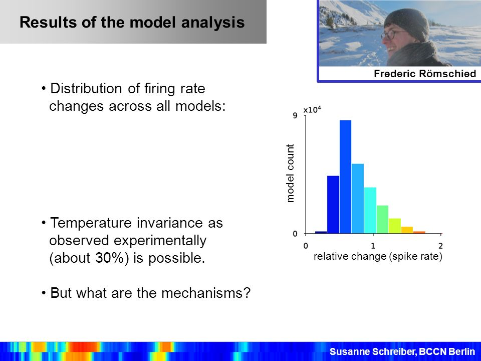 Results of the model analysis