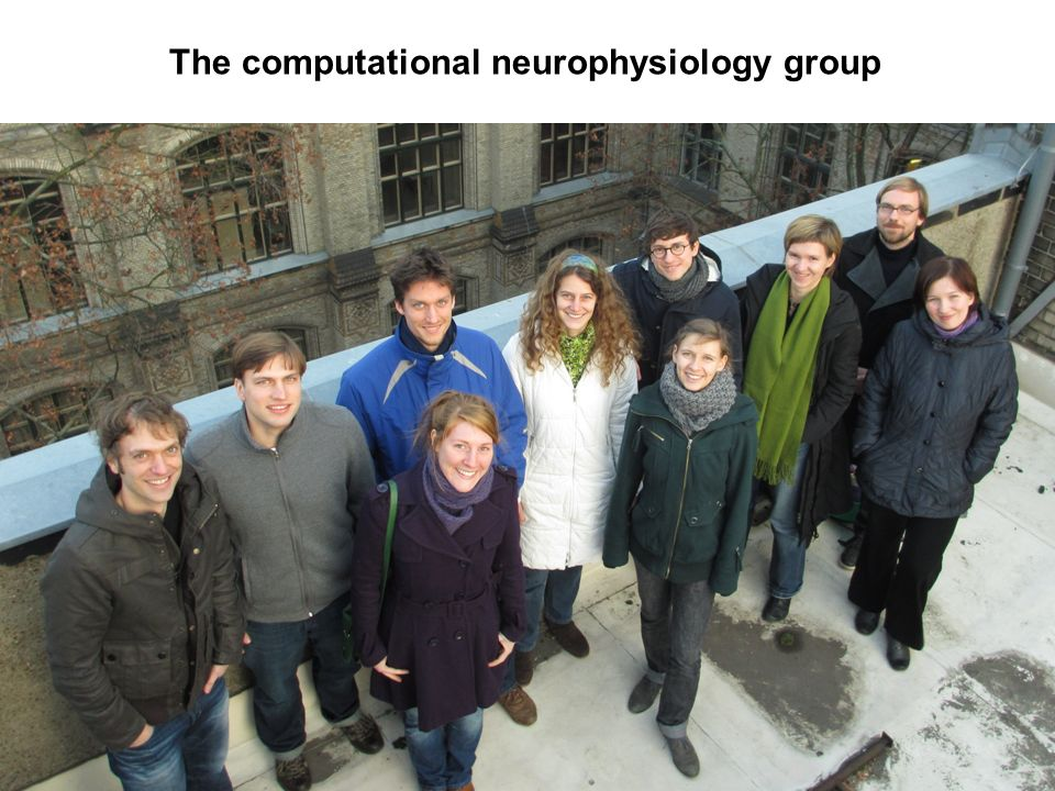 The computational neurophysiology group
