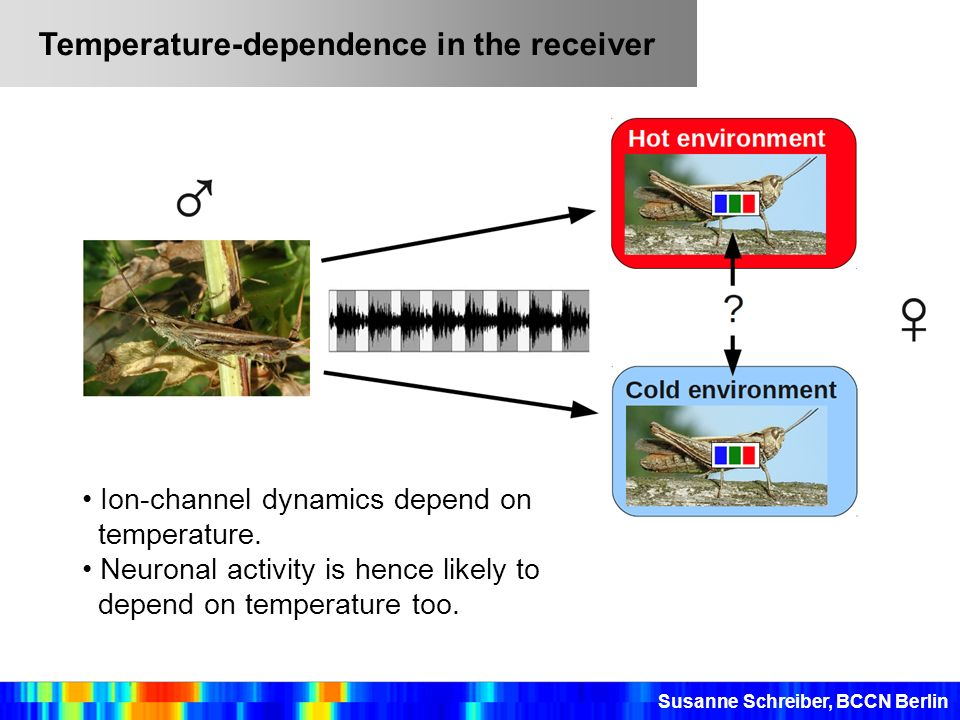 Temperature-dependence in the receiver