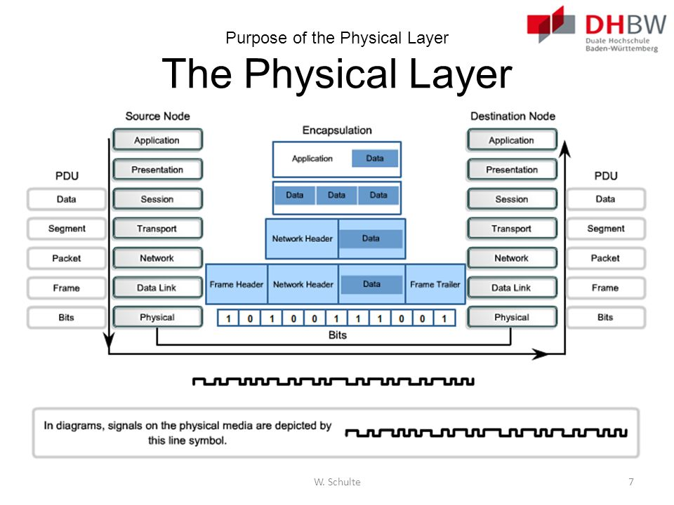 Purpose of the Physical Layer The Physical Layer
