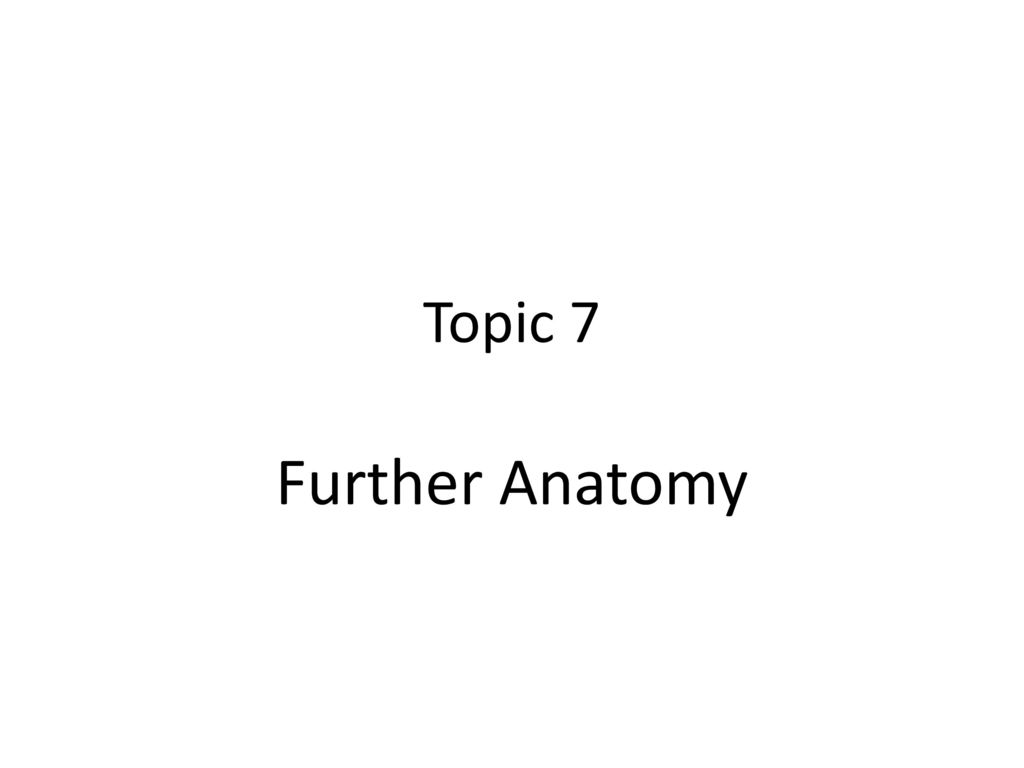 Topic 7 Further Anatomy