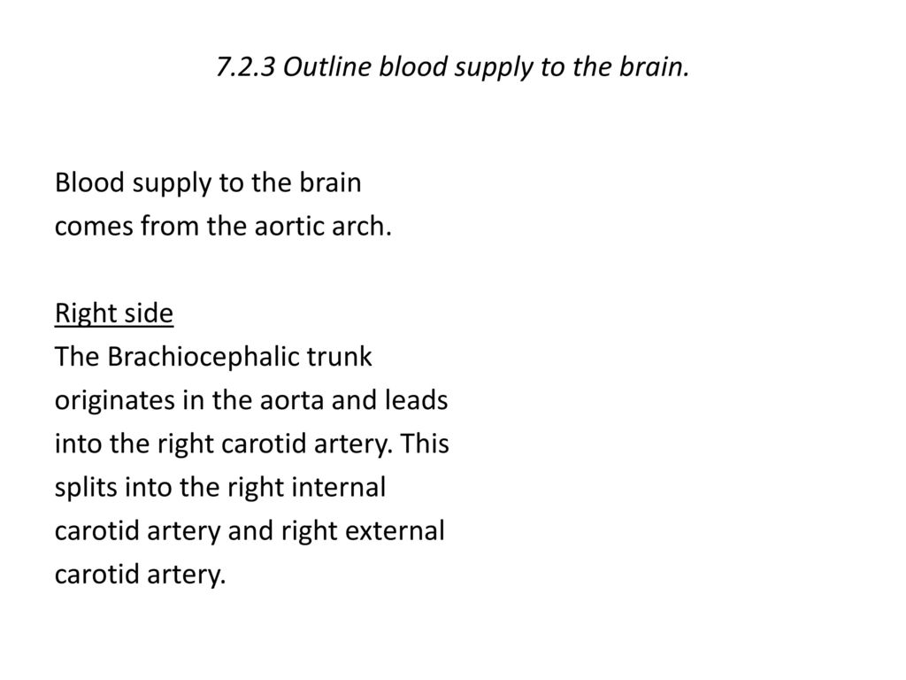 7.2.3 Outline blood supply to the brain.