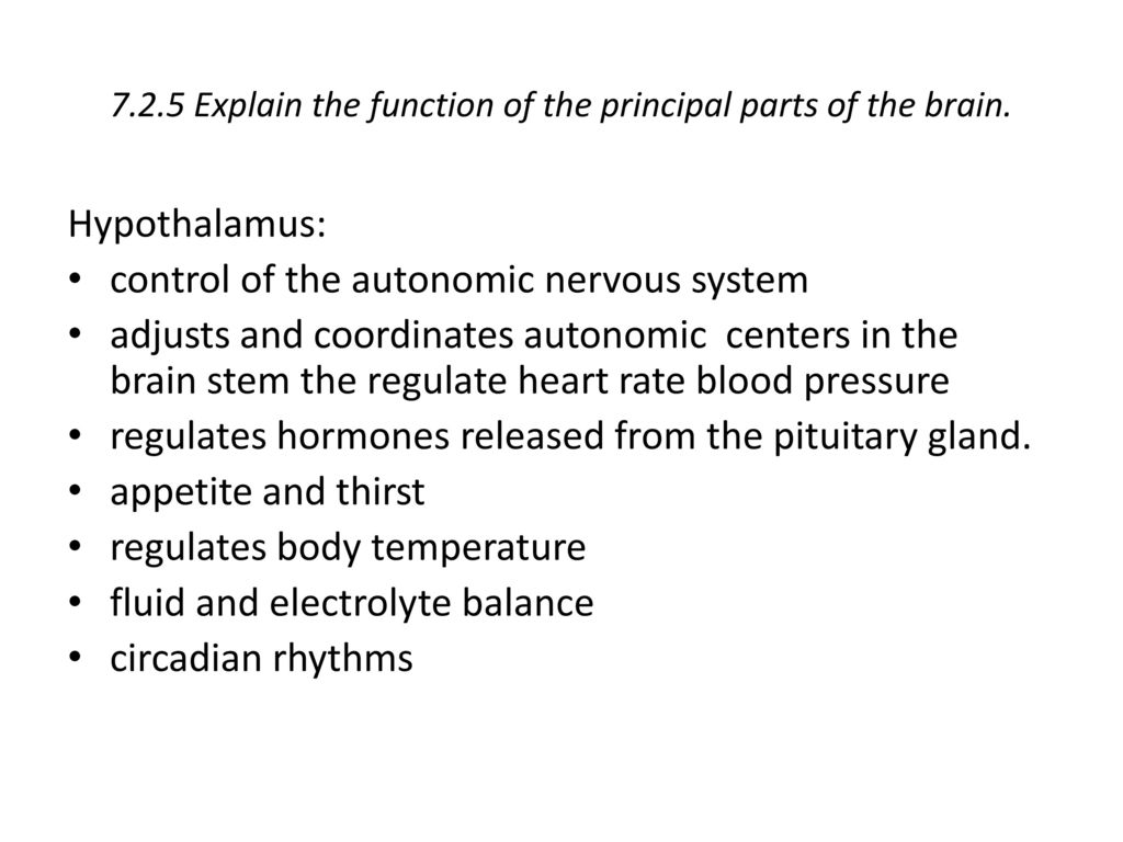 7.2.5 Explain the function of the principal parts of the brain.