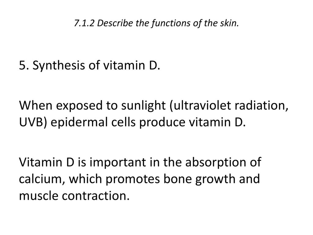 7.1.2 Describe the functions of the skin.