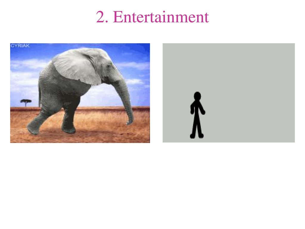 2. Entertainment