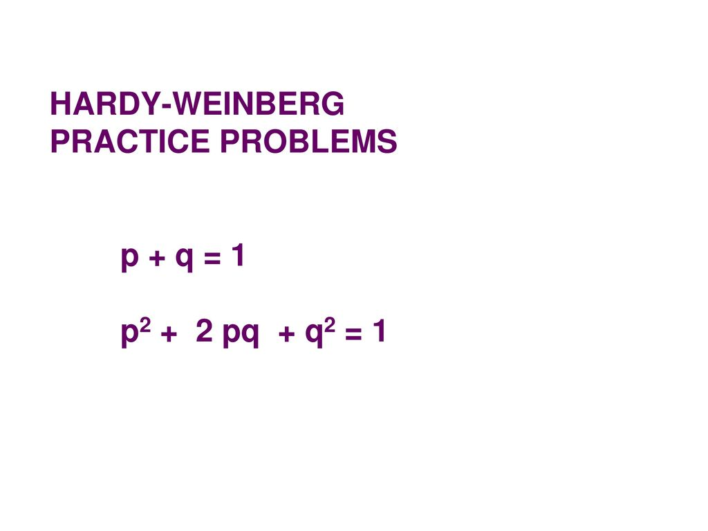 worksheet Hardy Weinberg Practice Problems Worksheet With Answers hardy weinberg equilibrium ppt download 7 practice problems p q 1 p2 2 pq q2 1