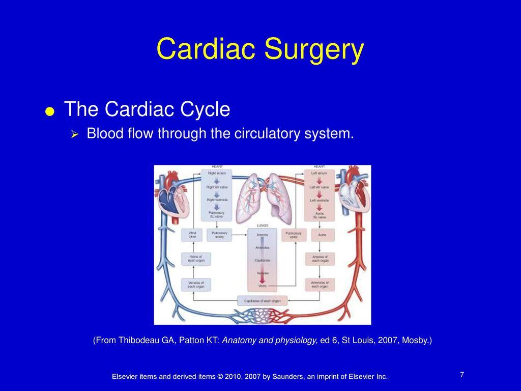 Moderno Anatomy And Physiology Patton Pdf Imagen - Imágenes de ...