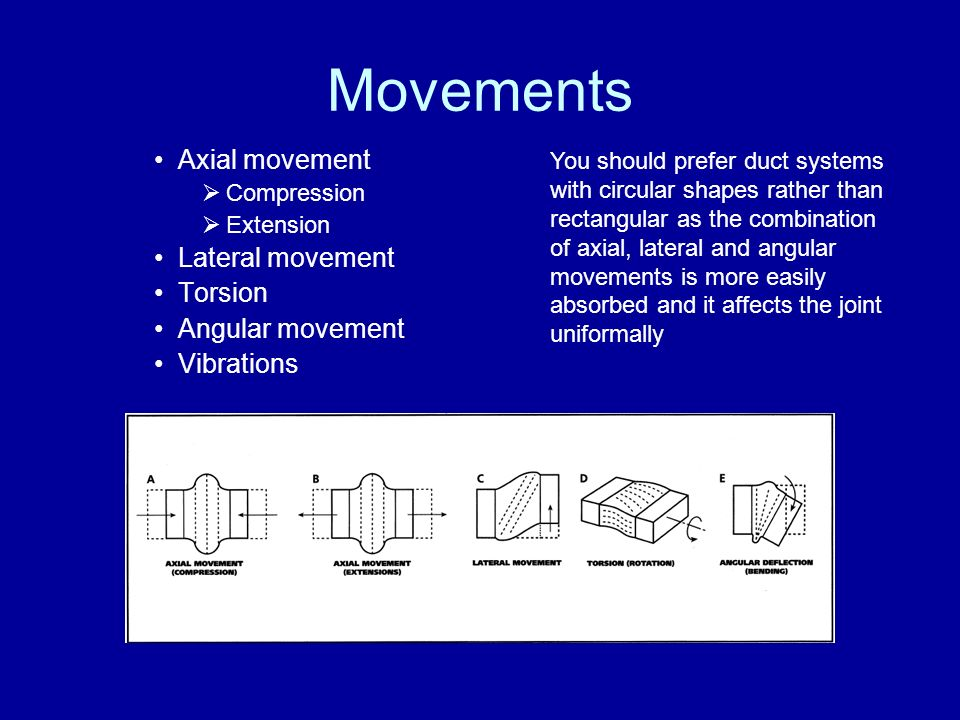 Movements Axial movement Lateral movement Torsion Angular movement