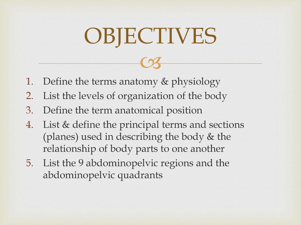 An Introduction to the Structure and Function of the Body - ppt download