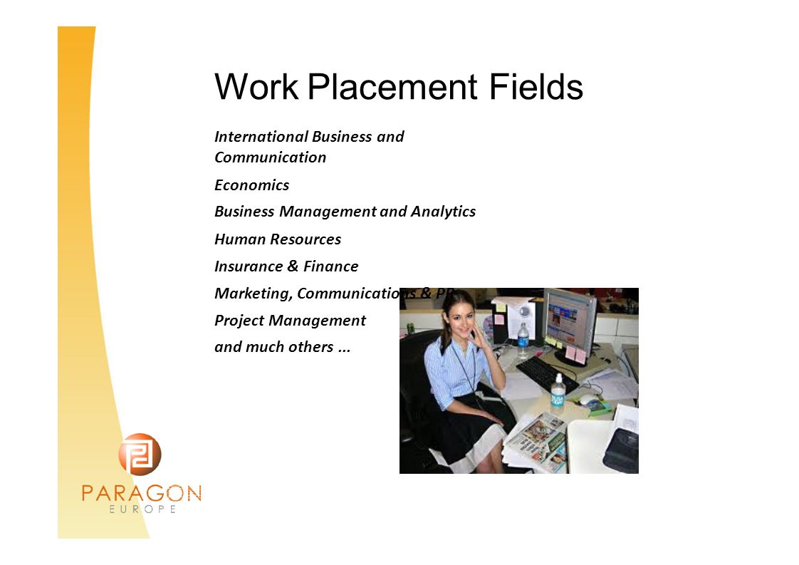 Work Placement Fields International Business and Communication