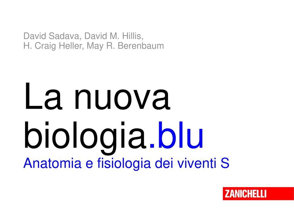 Dorable Anatomía Y Fisiología Interactivo Elaboración - Anatomía de ...