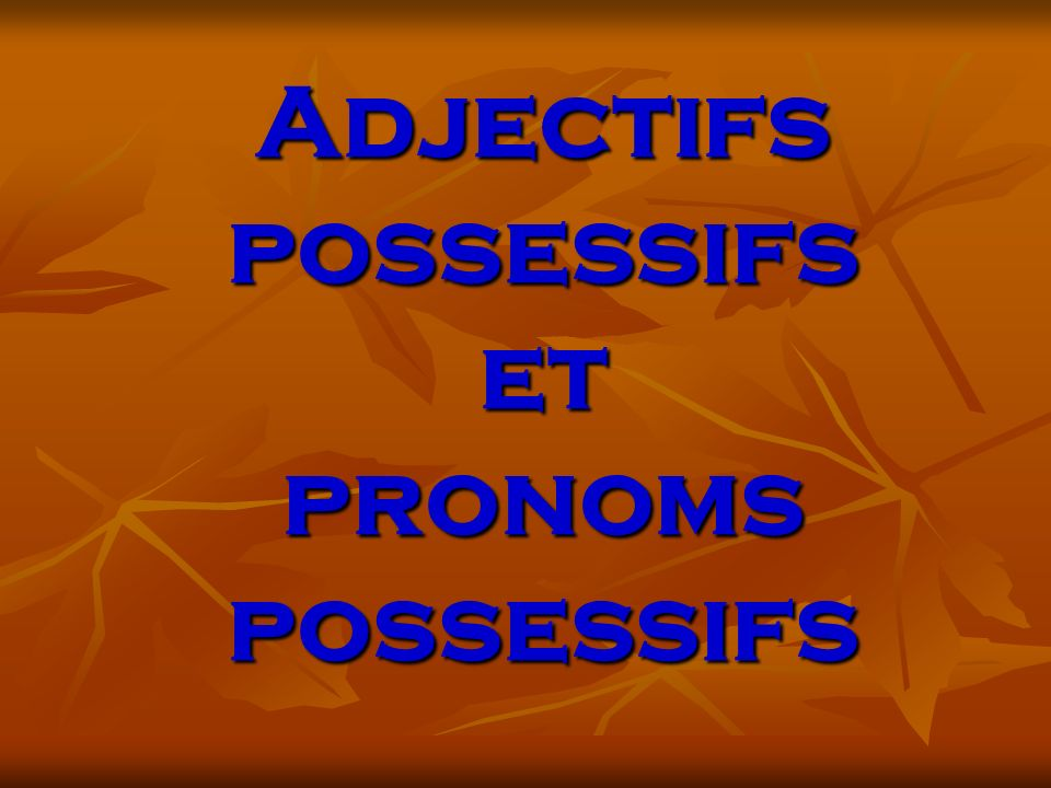 Adjectifs possessifs et pronoms possessifs