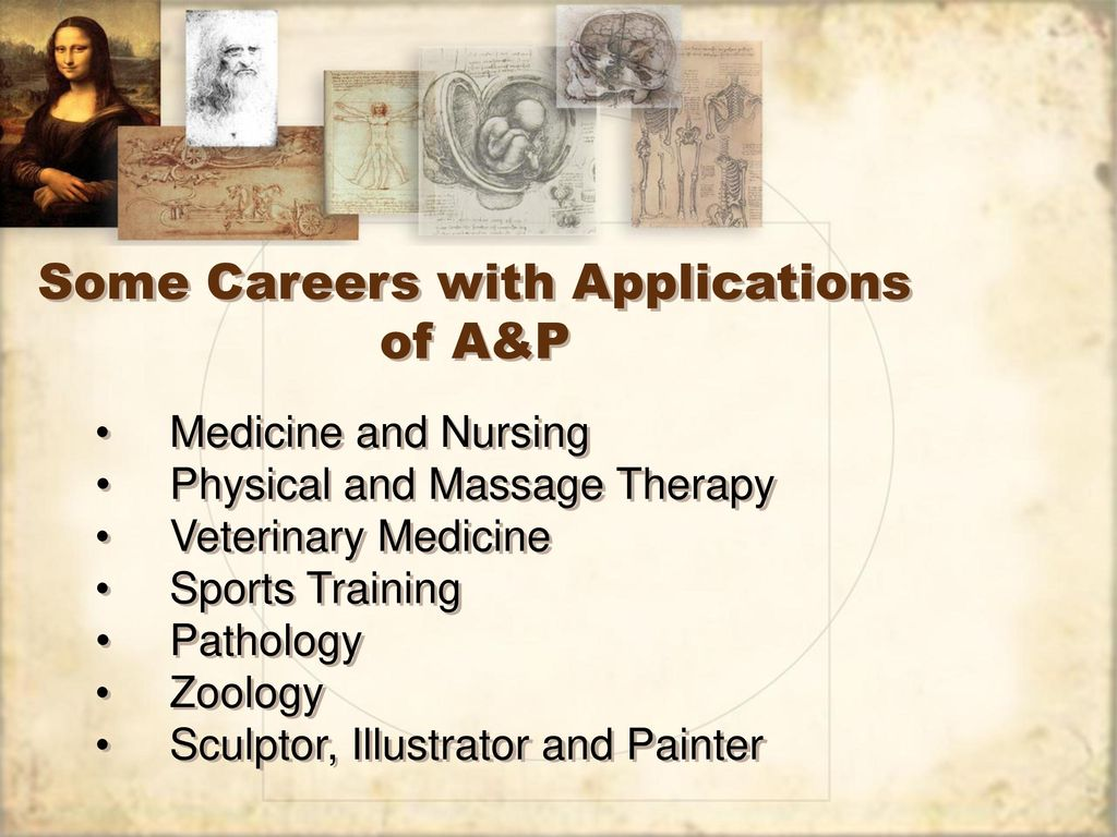 Nice Careers With Anatomy Ensign - Physiology Of Human Body Images ...