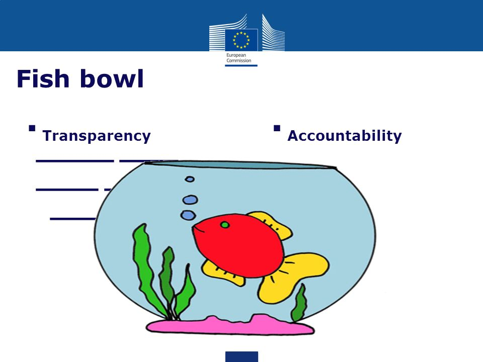 Fish bowl Transparency Accountability