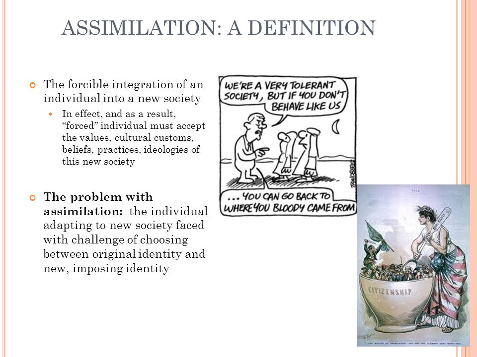 ASSIMILATION: A DEFINITION