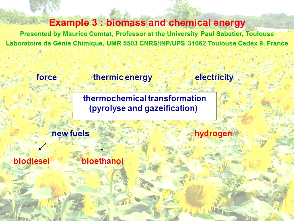 Example 3 : biomass and chemical energy