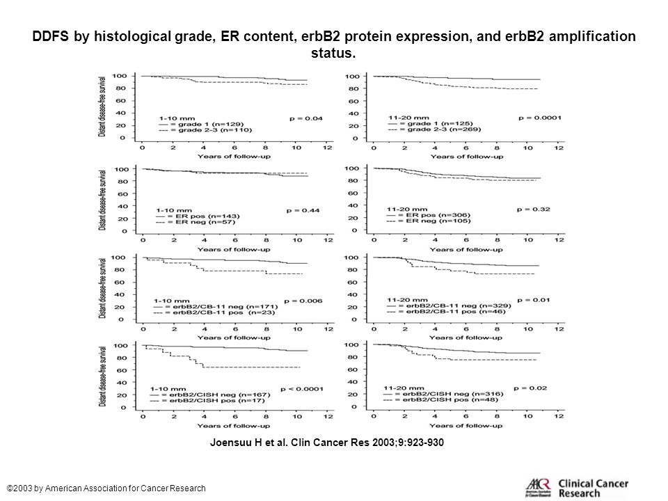 DDFS by histological grade, ER content, erbB2 protein expression, and erbB2 amplification status.