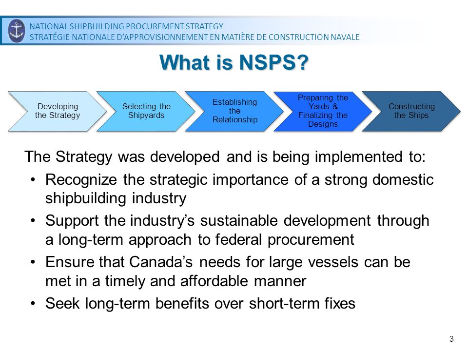What is NSPS The Strategy was developed and is being implemented to: