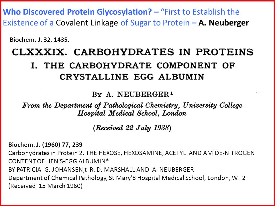 Who Discovered Protein Glycosylation