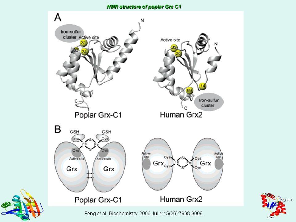 Feng et al. Biochemistry. 2006 Jul 4;45(26):7998-8008.