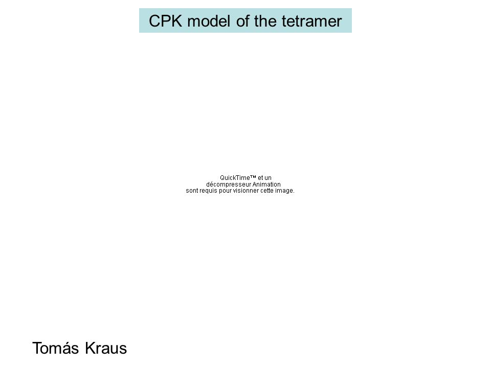CPK model of the tetramer