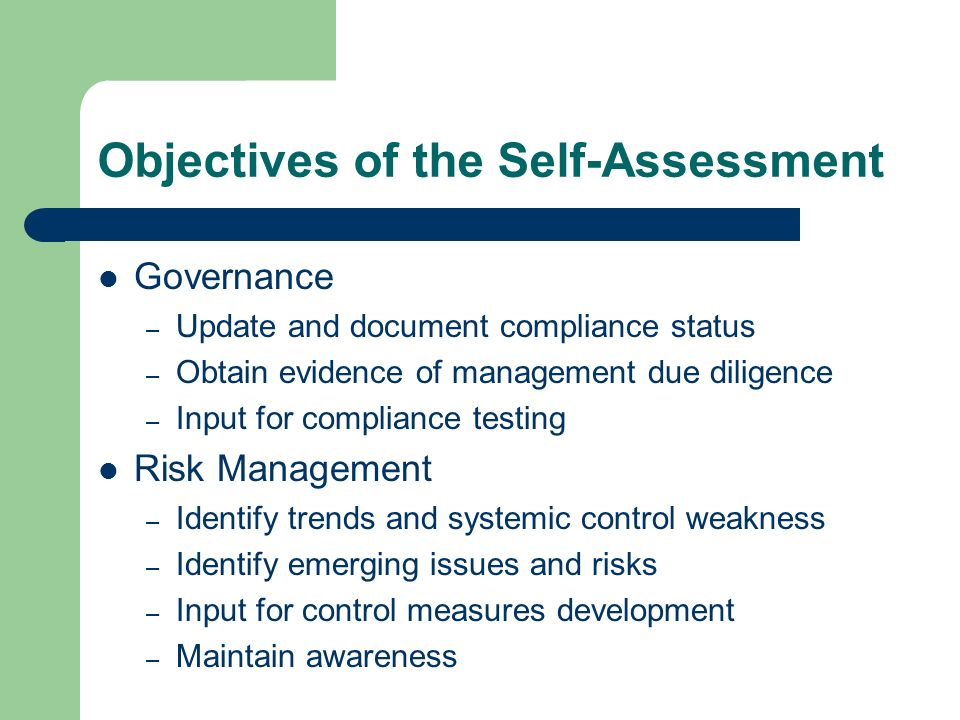 Objectives of the Self-Assessment
