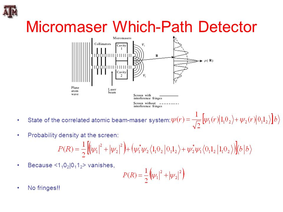 Micromaser Which-Path Detector
