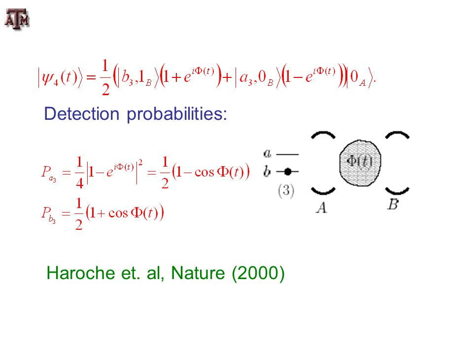 Detection probabilities: