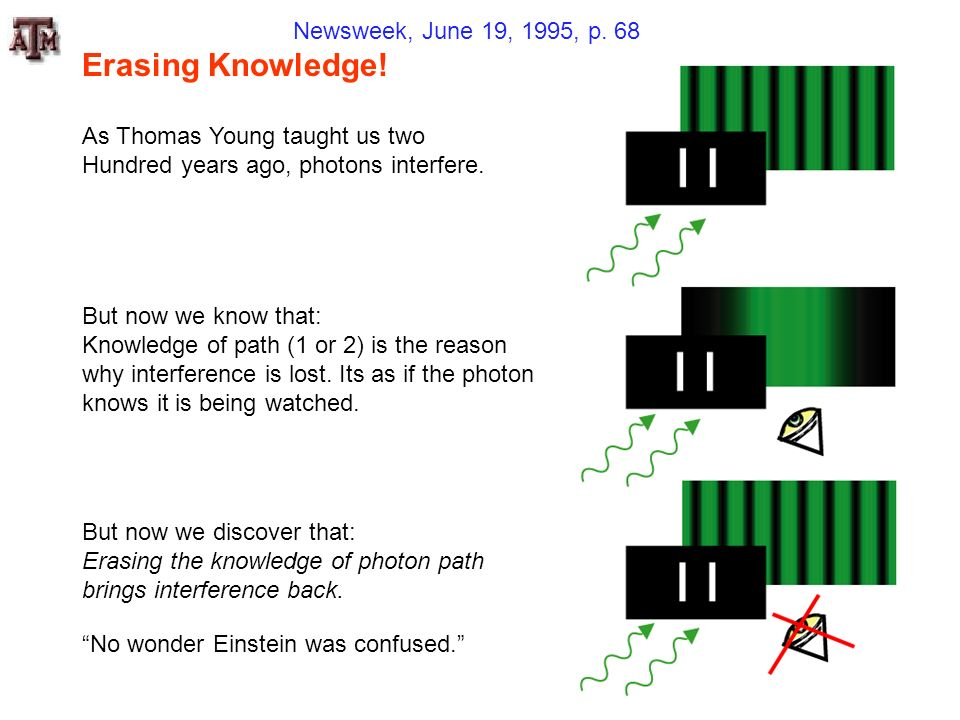 Erasing Knowledge! Newsweek, June 19, 1995, p. 68
