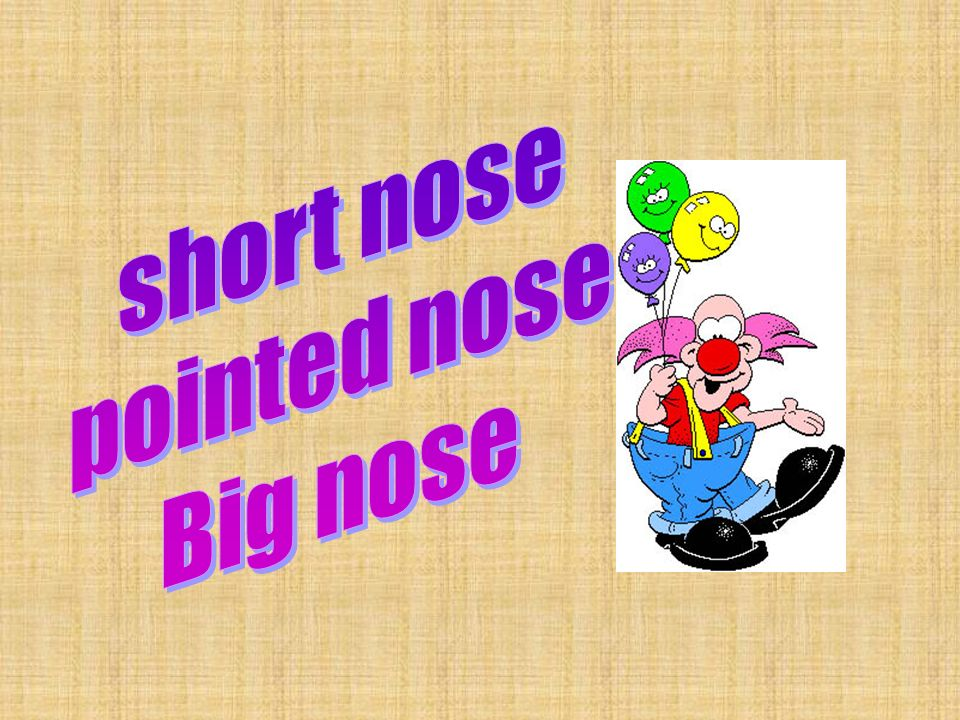 short nose pointed nose Big nose