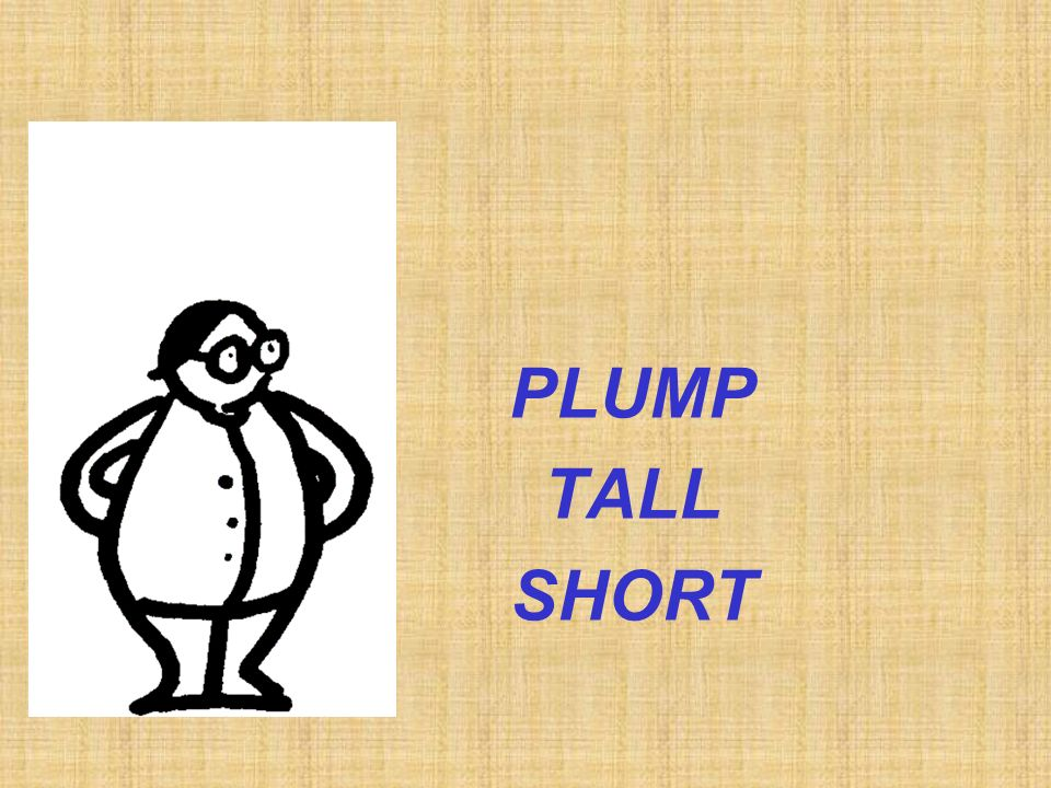 PLUMP TALL SHORT