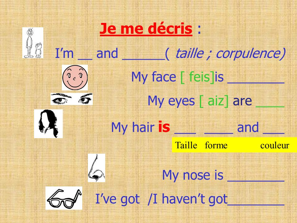 Je me décris : I'm __ and ______( taille ; corpulence)
