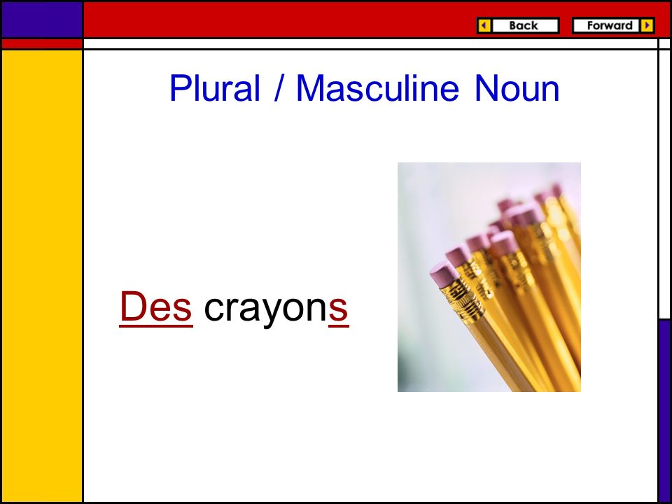 Plural / Masculine Noun