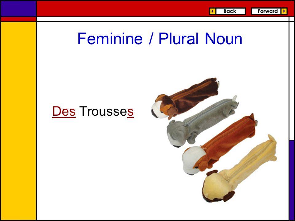 Feminine / Plural Noun Des Trousses