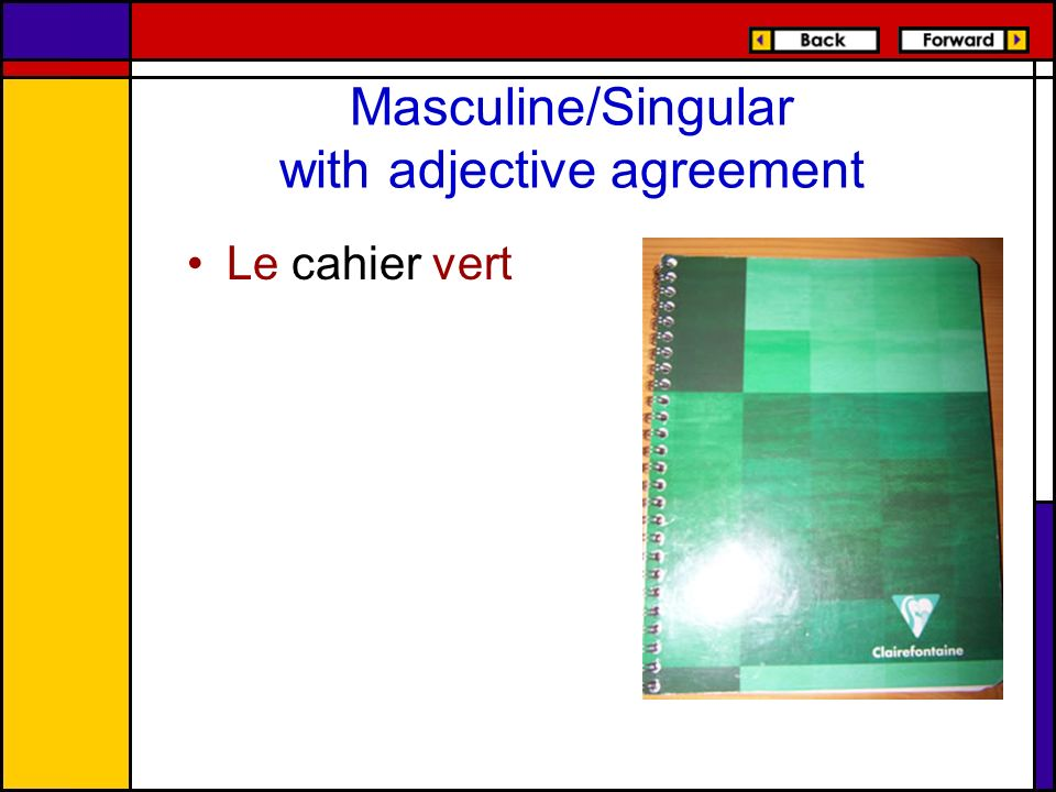 Masculine/Singular with adjective agreement