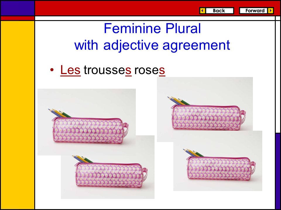 Feminine Plural with adjective agreement