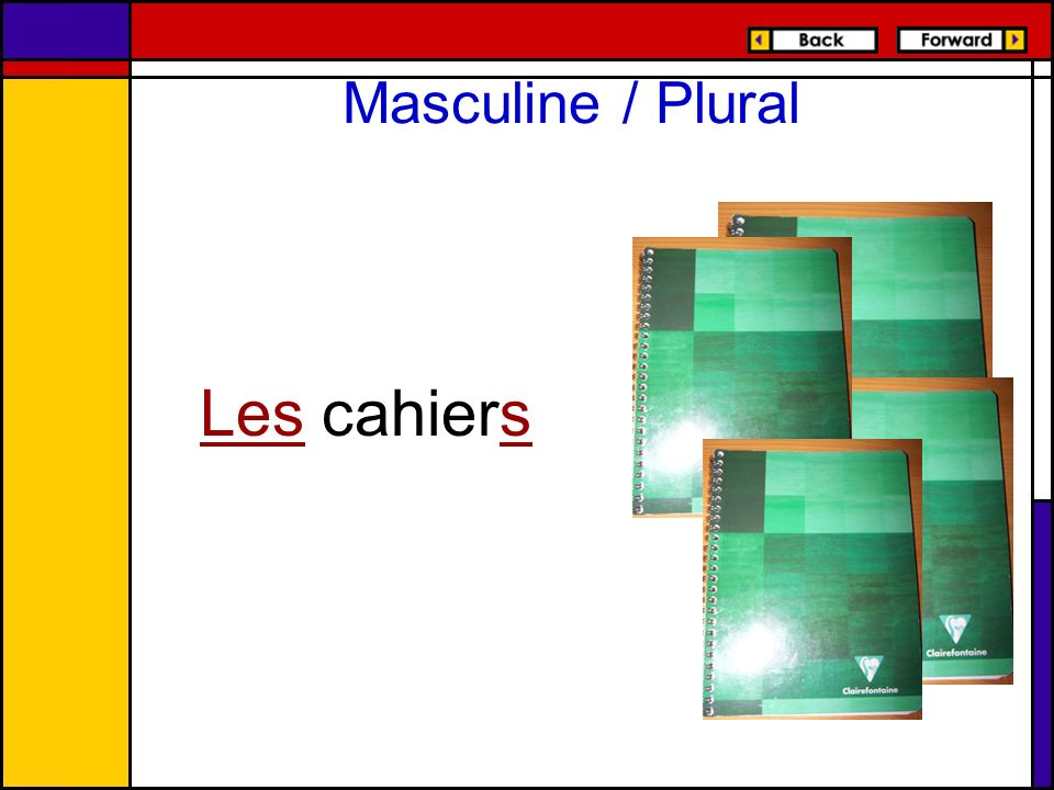 Masculine / Plural Les cahiers